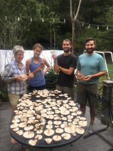 shiitake_mushroom_harvest